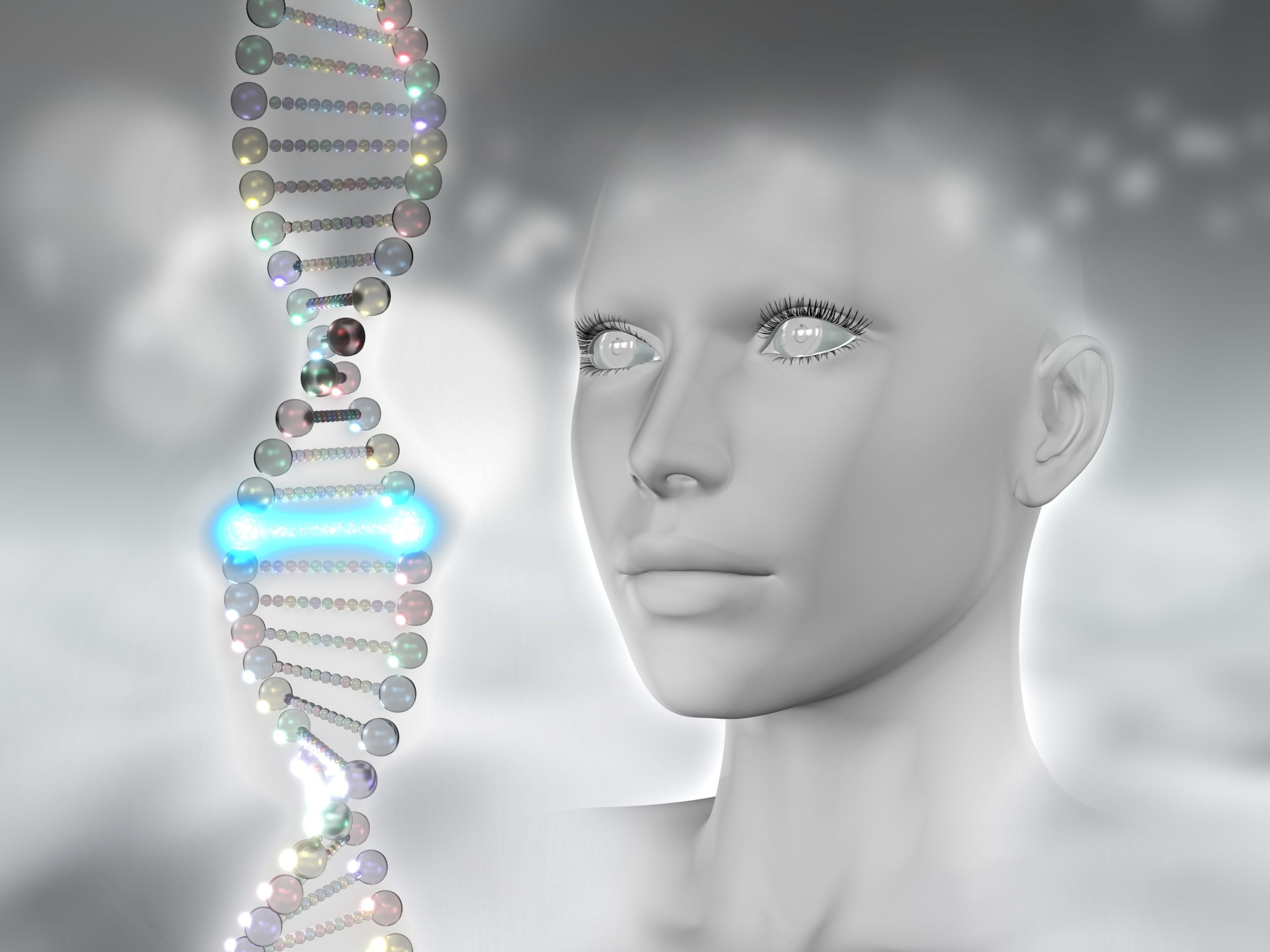 Aspectos importantes da genética