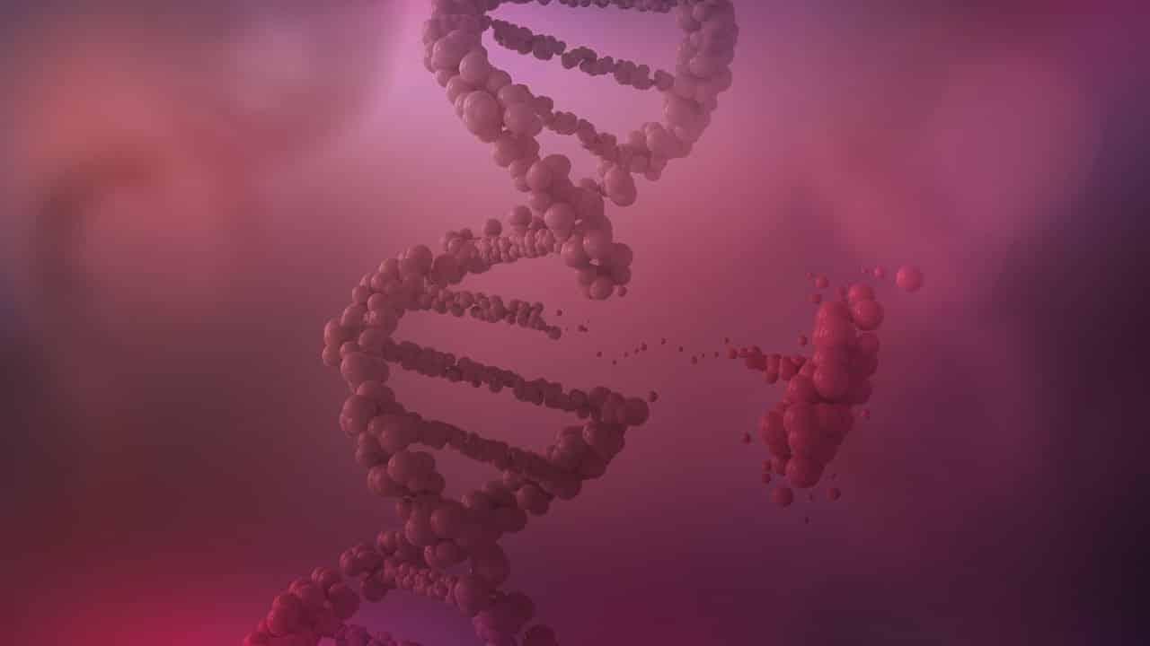 Live CMB > Genomic assays in the neoadjuvant setting.